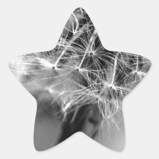 Dandelion Monochrome Star Sticker