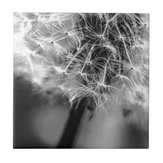 Dandelion Monochrome Tile