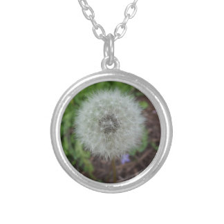 dandelion neckless silver plated necklace