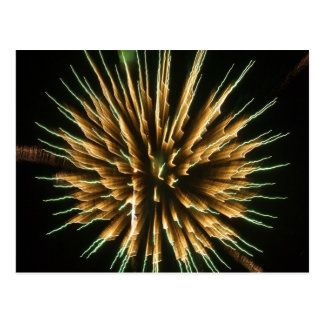 Dandelion on Fire Postcard