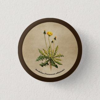 Dandelion On Old Paper 1 Inch Round Button