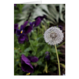Dandelion & pansies greeting card