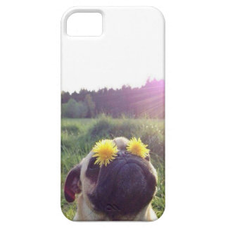 Dandelion pug iPhone 5 cover