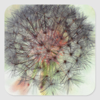 Dandelion Seed Head Square Sticker