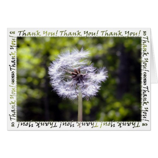 Dandelion Snow Thank You Card