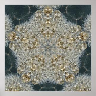 Dandelion Star Nov 2012 Poster