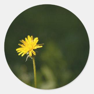 Dandelion Round Sticker