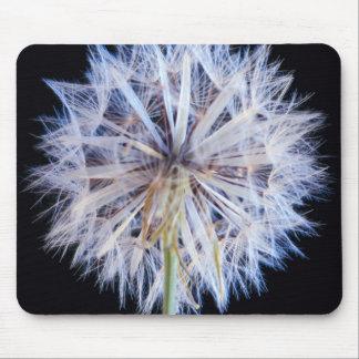 Dandelion (Taraxacum Officinale) Seed Head Mouse Pad