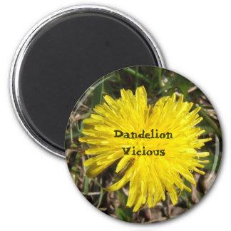 Dandelion Vicious magnet