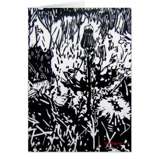 Dandelions Card