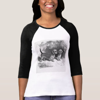 Dandie Dinmonts Vintage Dog Illustration T-Shirt
