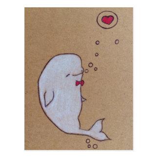dandy beluga postcard
