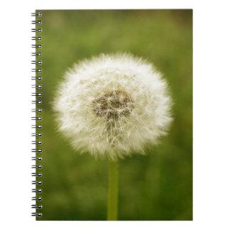Dandy Lion Notebook