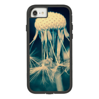Dandylion iPhone Case
