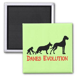 Danes Evolution Magnet