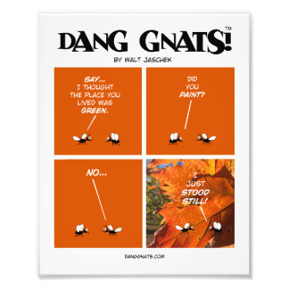 "Dang Gnats in ""Did You Paint?"" by Walt Jaschek Photo Print"