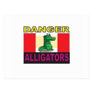 danger aligators postcard