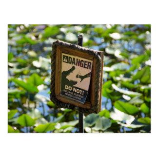 Danger, alligator! postcard