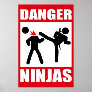 Danger Ninjas Affiches