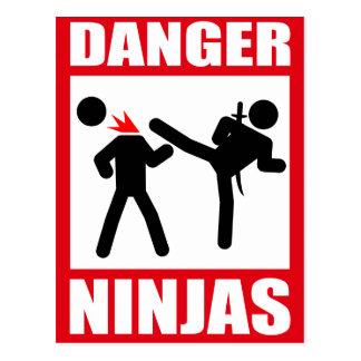 Danger Ninjas Cartes Postales