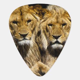 Dangerous Predator Lions Guitar Pick