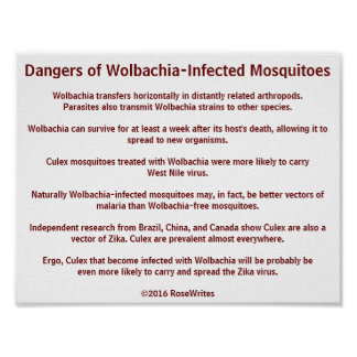 Dangers of Wolbachia Mosquitoes by RoseWrites Poster