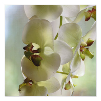 Dangling Orchid  Invitations