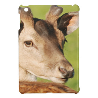 Daniel young smart wild animal case for the iPad mini
