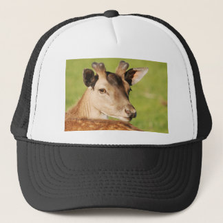 Daniel young smart wild animal trucker hat