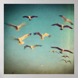 Dans Avec Les Oiseaux Poster