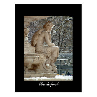 Danubius fountain, Budapest Postcard