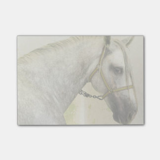 Dapple Gray Andalusian Horse Post-it Notes