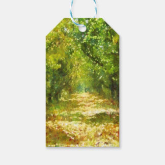Dappled Light Of Daydreams Gift Tags