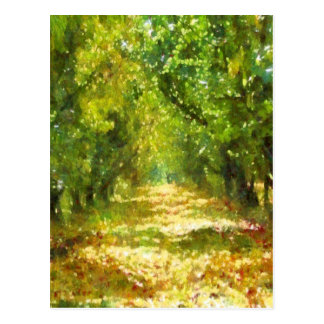 Dappled Light Of Daydreams Postcard