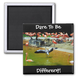 Dare To Be Different Magnet