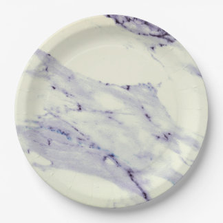 Dark Blue and White Marble Paper Plate