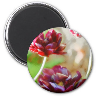 Dark Bordeaux Peony Flowering Tulip Trio 2 Inch Round Magnet