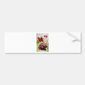 Dark Bordeaux Peony Flowering Tulip Trio Bumper Sticker