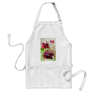 Dark Bordeaux Peony Flowering Tulip Trio Standard Apron
