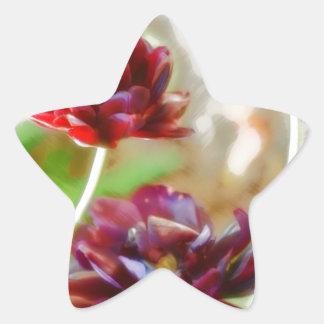 Dark Bordeaux Peony Flowering Tulip Trio Star Sticker