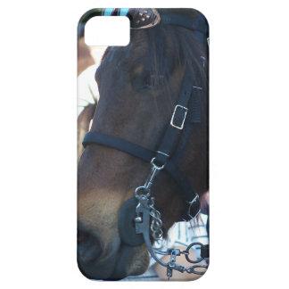 Dark Brown horse wearing goggles iPhone 5 Case