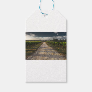 Dark Country Road Gift Tags