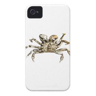 Dark Crab Photo iPhone 4 Cover