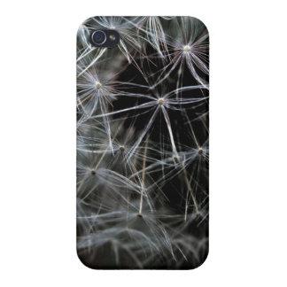 Dark Dandelion iPhone 4 Glossy Finish Case iPhone 4 Case