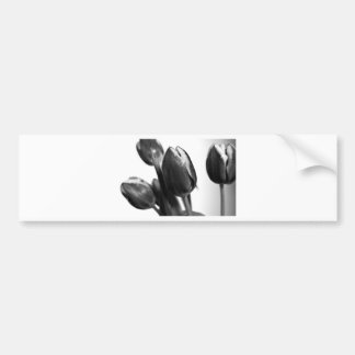 Dark Elegance OF Tulips Bumper Sticker