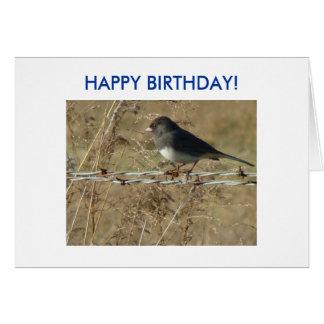 Dark-eyed Junco & Barbwire, HAPPY BIRTHDAY! Card