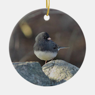 Dark-eyed junco ceramic ornament