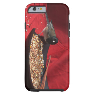 Dark Eyed Junco iPhone case