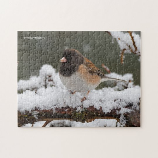 Dark-Eyed Junco on the Fence Jigsaw Puzzle