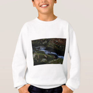 dark green stream sweatshirt